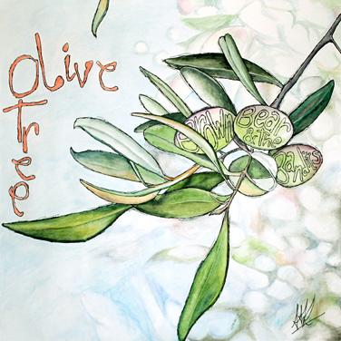 1Olive Tree2