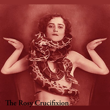The Wharves _ The Rosy Crucifixion Split LP